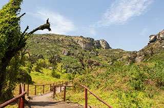 Reserva Nacional de Lachay (RNL)