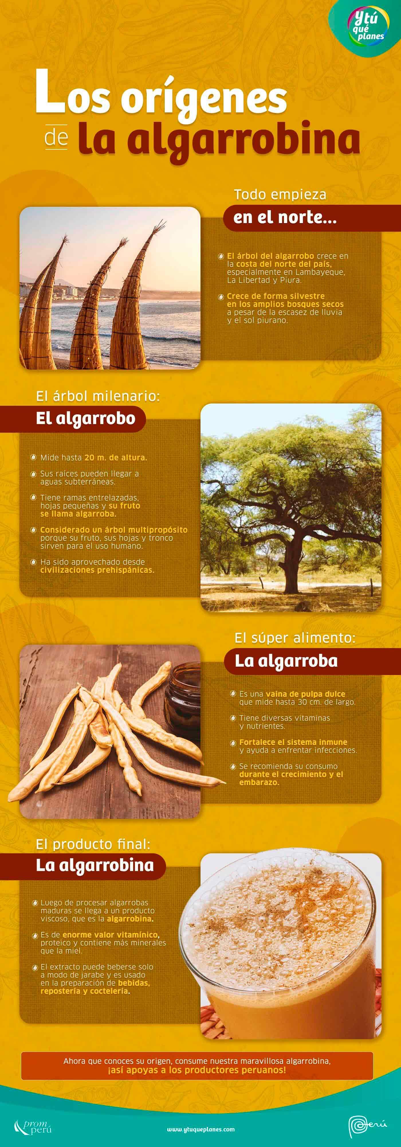Día de la Algarrobina: descubre sus orígenes