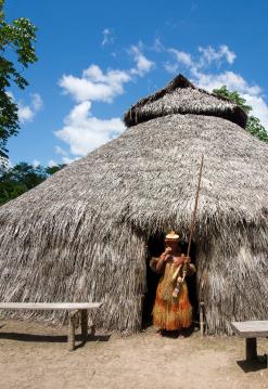 Amazonas Típico