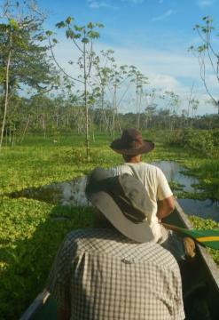 Descubre El Amazonas, maravilla natural del mundo
