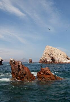 Aventura en Ica y Paracas