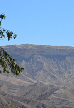 Moquegua Andina