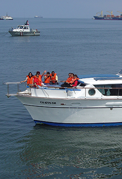 Tour en yate a las Islas Palomino - Callao