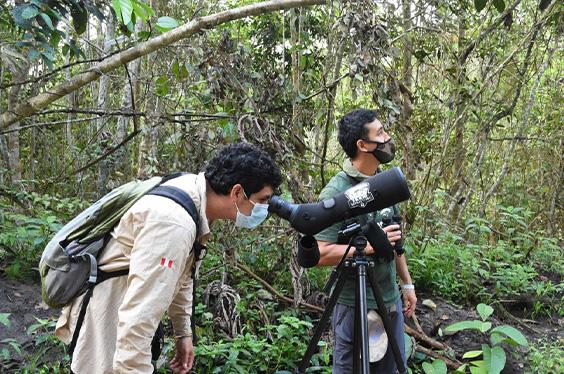 Observación de fauna silvestre