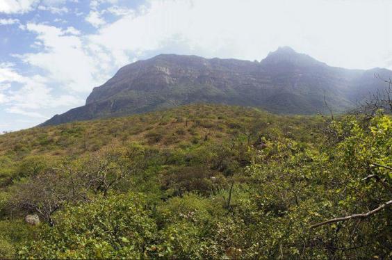 reserva-ecologica-chaparri