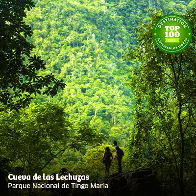 Feriado largo: descubre los lugares turísticos del Perú que están entre los más sostenibles del mundo