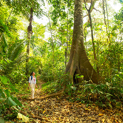 Tambopata: 5 actividades que tienes que hacer en esta Reserva Nacional