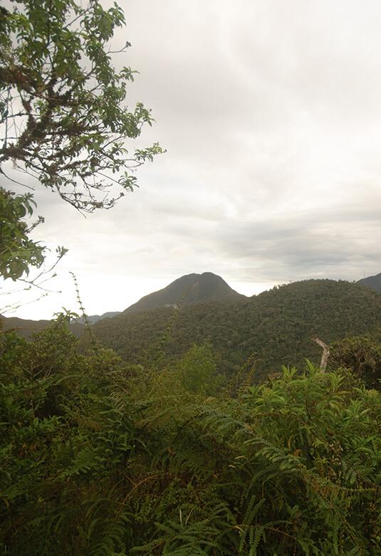 Área de Conservación Privada Abra Patricia