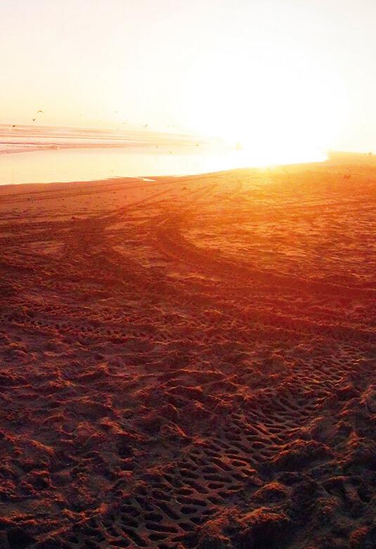 Circuito de Playas de Camaná