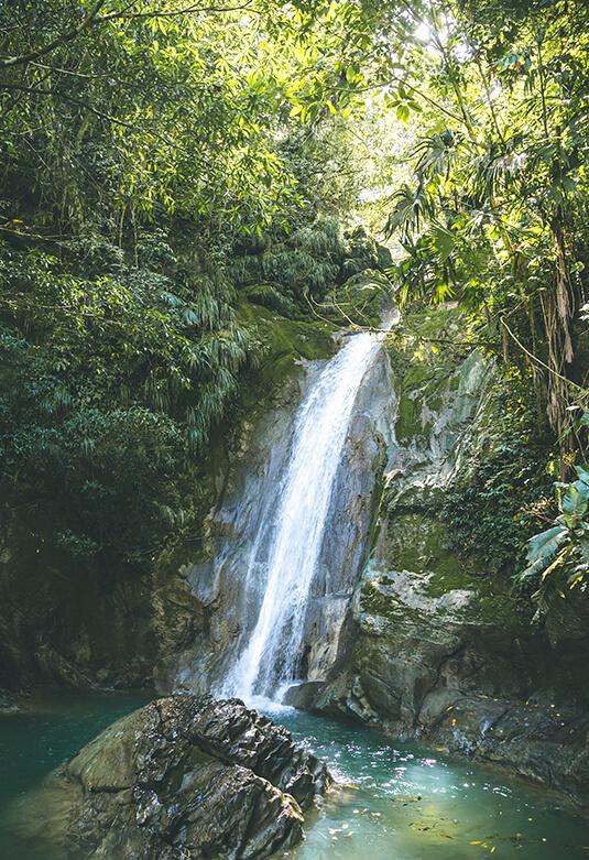 Parque Nacional de Tingo María