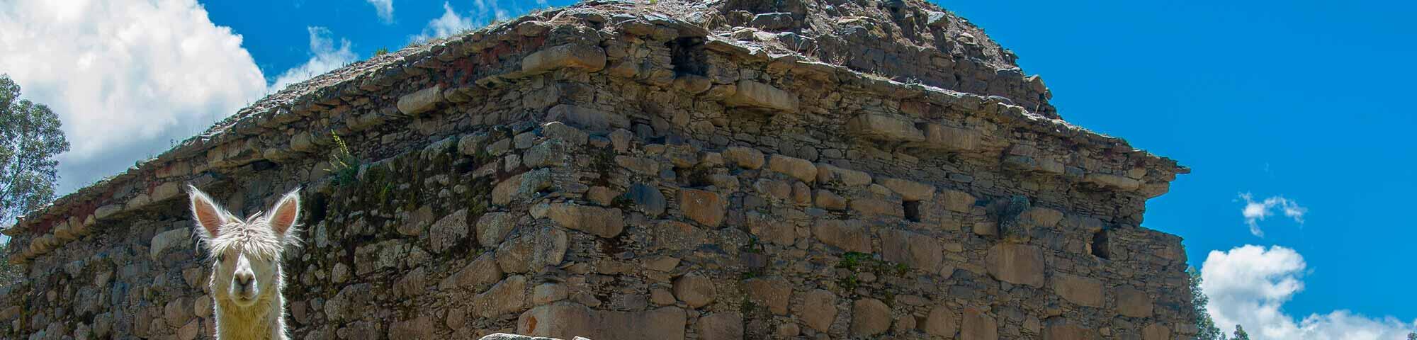 Restos Arqueológicos de Willcahuain