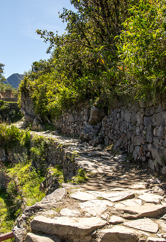 Santuario Histórico - Parque Arqueológico Nacional de Machupicchu