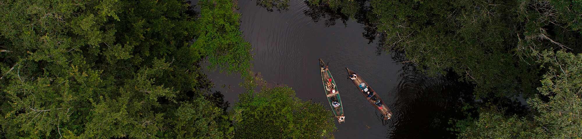 Reserva ecológica Tingana