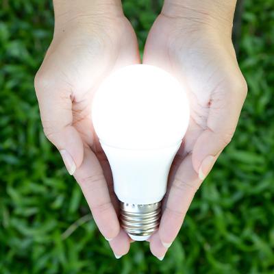 Día Nacional del Ahorro de Energía