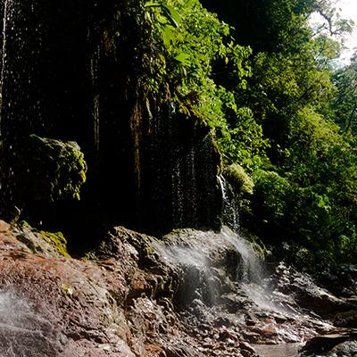 Aniversario del Parque Nacional Yanachaga Chemillén - Pasco