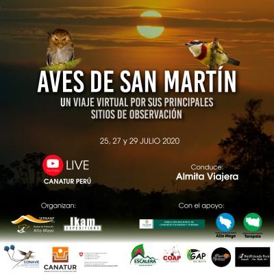 Aves en San Martín: Un viaje virtual por sus principales sitios de observación
