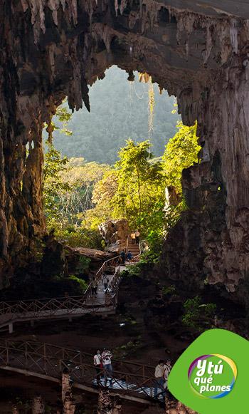 Cueva de las lechuzas en el Parque Nacional Tingo María.