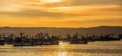 Paracas, Ica y Nasca obtienen el sello internacional Safe Travels