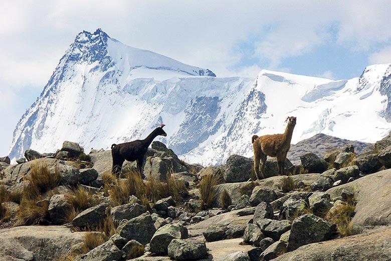 Vista al nevado Pariacaca