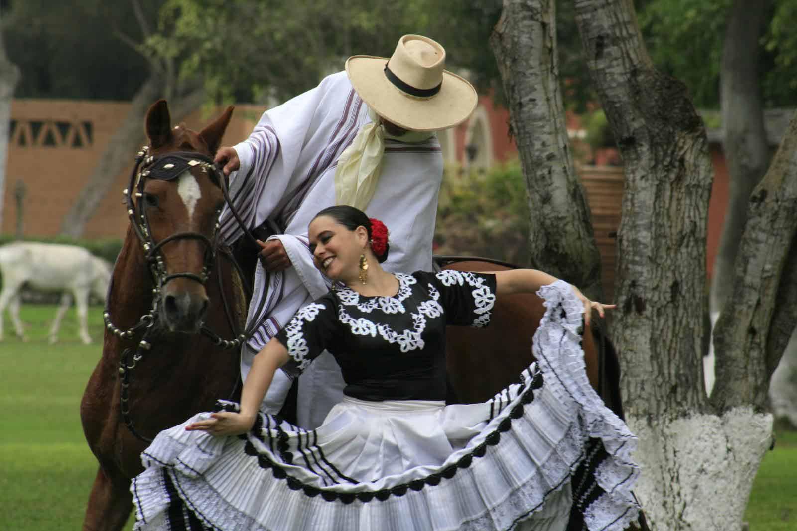 caballo-de-paso