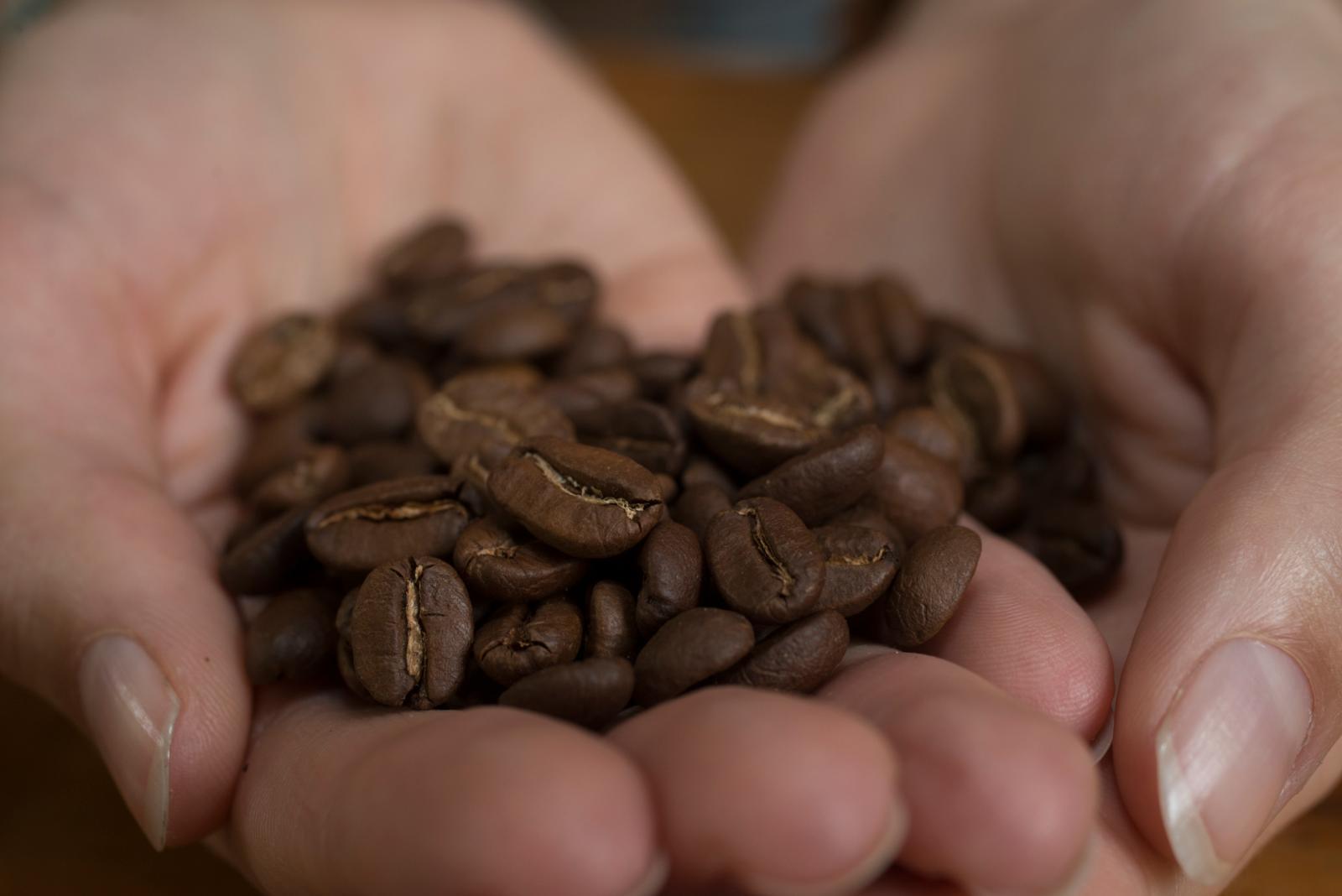 cafe-de-la-selva