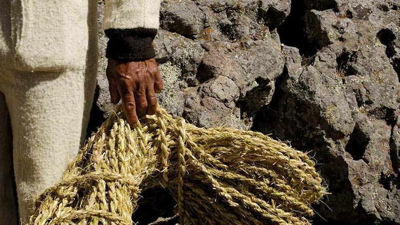 Fibras vegetales del puente Inca Q'eswachaka