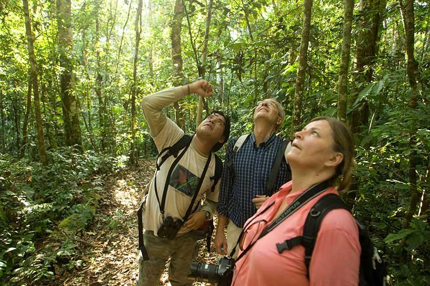 guía turístico en Amazonas