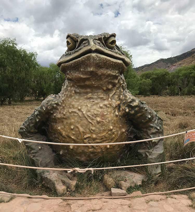 Escultura de sapo de Humedales de Huasao
