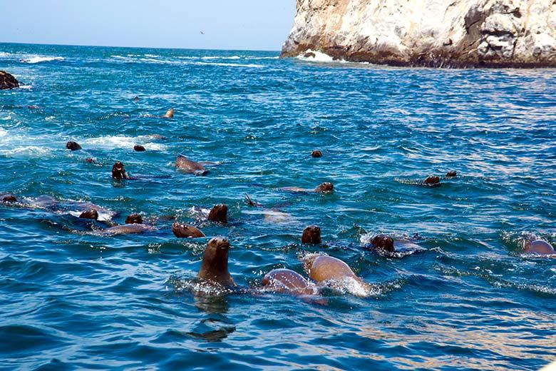 Islas Cavinzas e Islotes Palomino