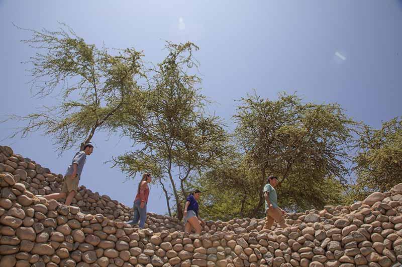 Ofertas de viaje Nazca