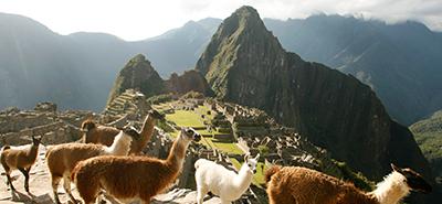 Turista japonés y cusqueña se convirtieron en embajadores de Machu Picchu