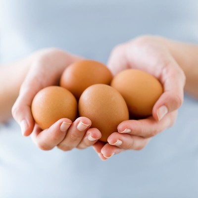 Huevo, un alimento que contribuye con tu nutrición