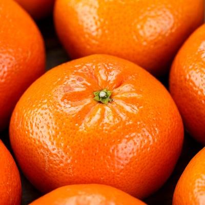 Nuestra mandarina conquista la tierra del sol naciente
