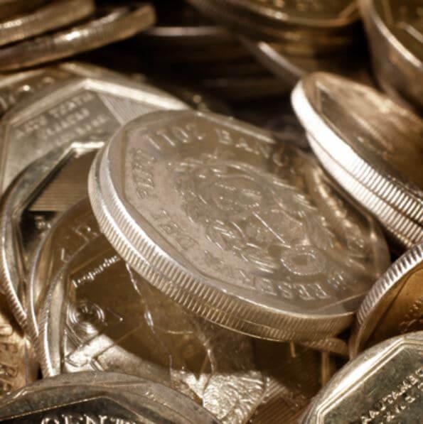Diez animales en peligro de extinción en las monedas de 1 sol