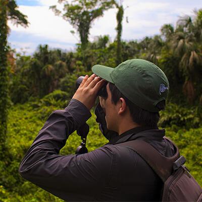 Las aves del Perú serán protagonistas en el Amazon Birding Festival