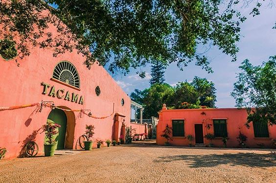 Ica Ruta del Pisco Tacama