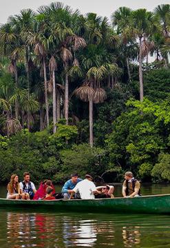 Eco jungla y Lago Sandoval