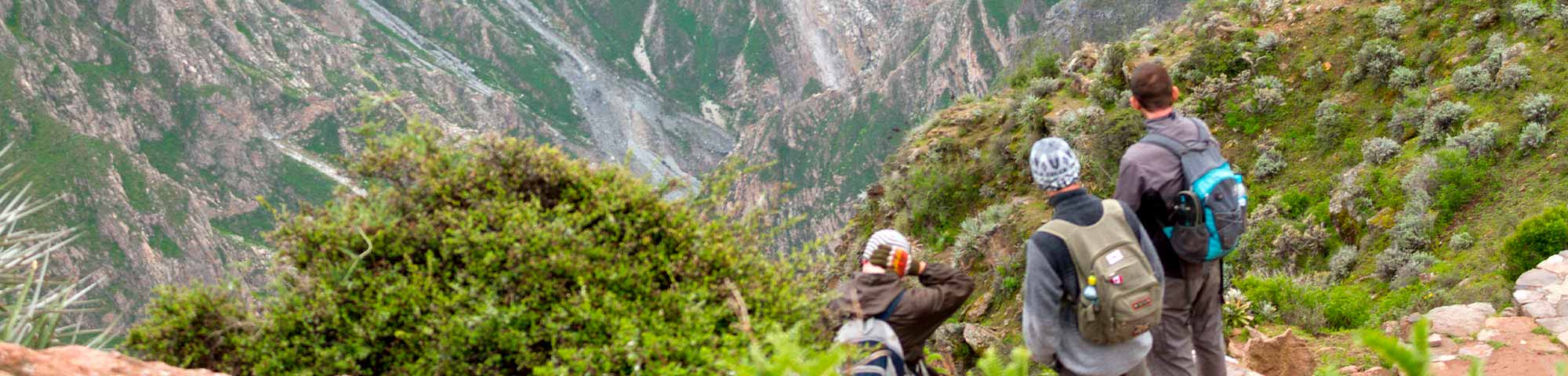 Arequipa: Se recupera el turismo en el Valle del Colca