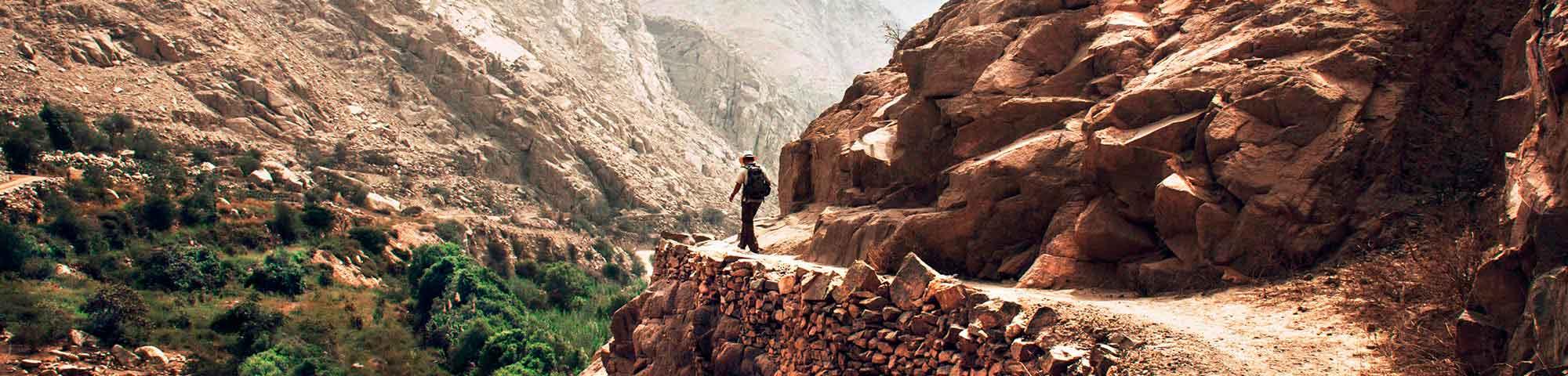 Camino Inca reabre sus puertas tras año y medio sin recibir visitantes