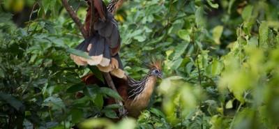 Turismo en las áreas naturales protegidas genera ingresos por US$ 800 millones al año