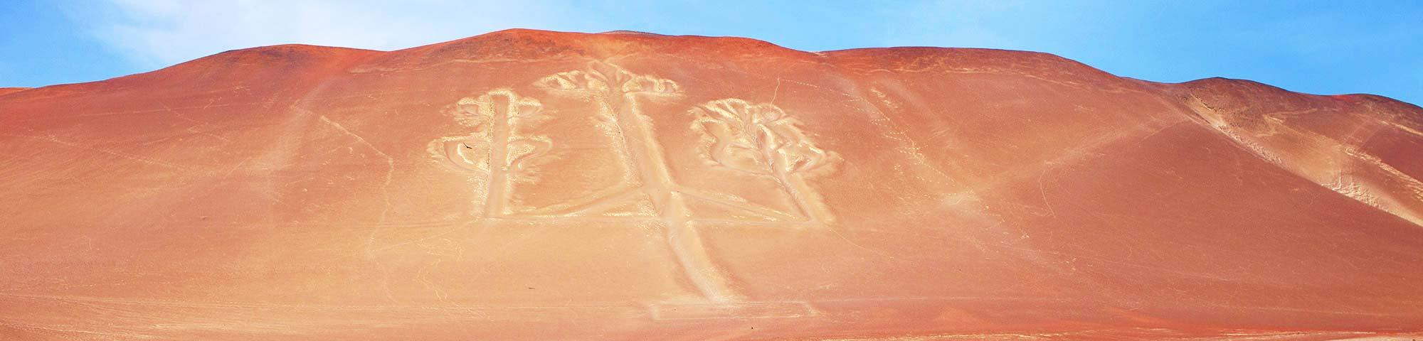 Diversas empresas turísticas de Paracas en Perú reciben el Sello Safe Travels