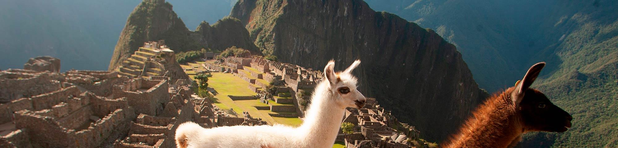 Marca Machu Picchu fortalecerá la reactivación turística