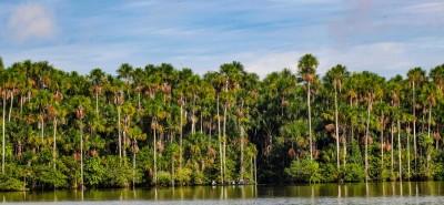 Reserva Nacional de Tambopata busca obtener sello 'Destino Bioseguro' tras su reapertura