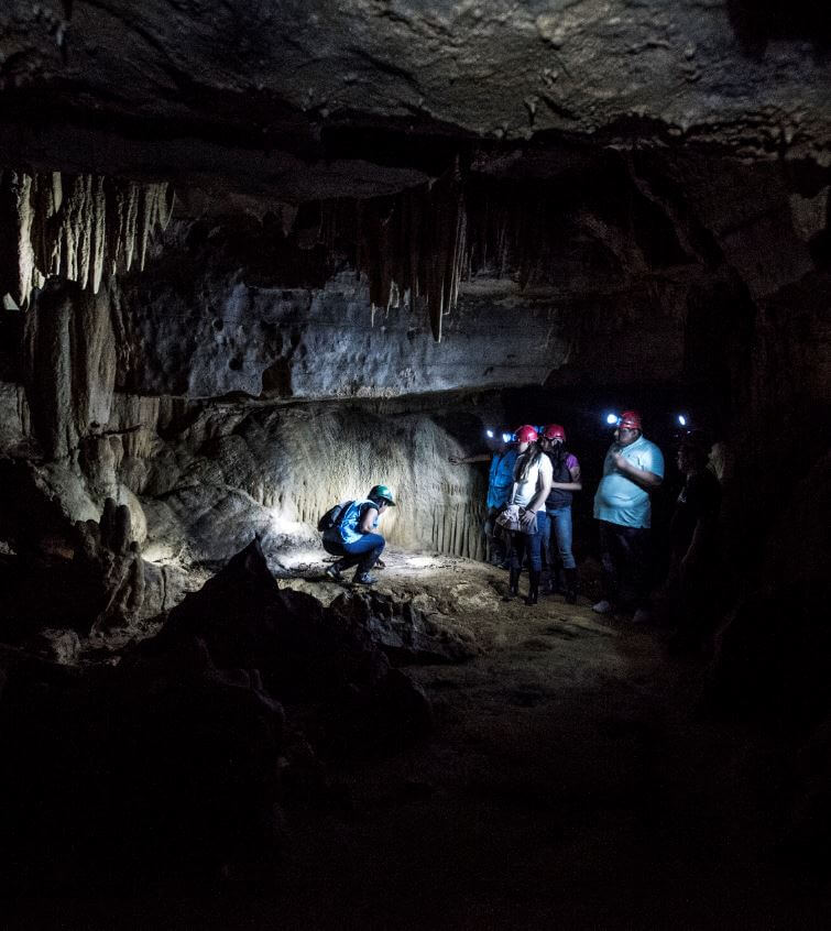 Cuevas de Palestina