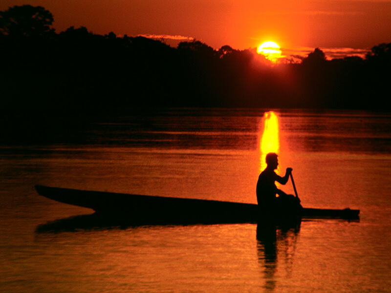 El río Amazonas y la selva de los espejos
